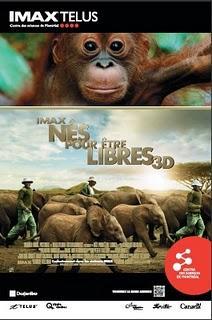 Et les chanceuses qui partent en safari sont...