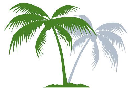 1.palmierTropYc
