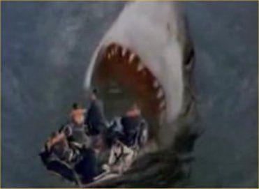 shark_attack_3
