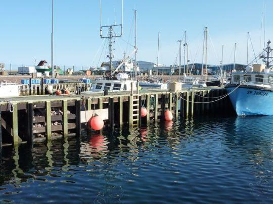 Galerie de bateaux à Saint Pierre et Miquelon