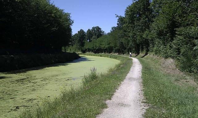 Promenade d'été en suivant le canal d'Orléans