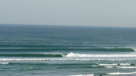 I surf because…