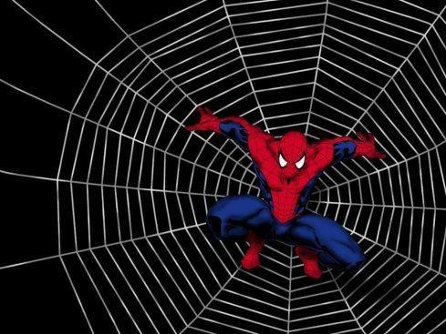 Le spider marketing, digital & consumer centric, un nouveau modèle d'agences??