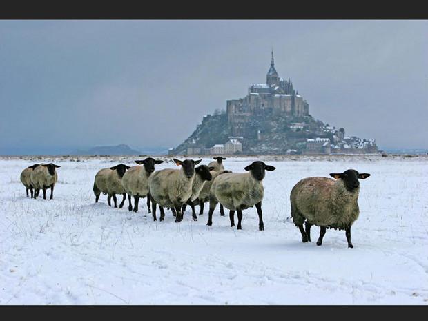 Des grévins devant le Mont-Saint-Michel, dans la Manche (Basse-Normandie, France).