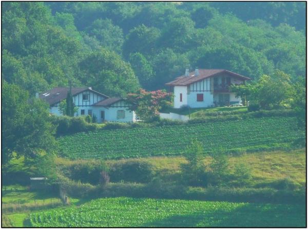 La douce lumière du Pays Basque