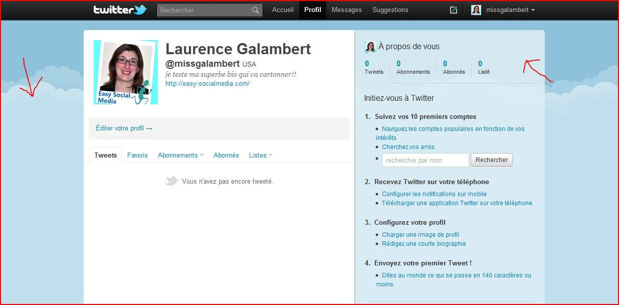 personnaliser son profil Twitter