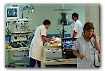 Santé/E.Coli : deux nouvelles personnes hospitalisées