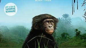 Film bonobos