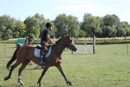 pony games 049