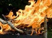 Pays-Bas: découverte restes préhistoriques d'un barbecue