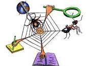 découverte métiers Licence Maths