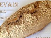 Levain naturel pain complet levain céréales