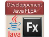Centre Service Java Flex