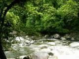 Autour Cairns: Parc Mossman Gorge