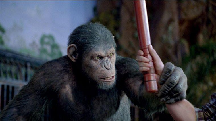 - [Critique] La Planète des Singes : les origines (2011) planete singes origines cesar imperial L B3WE57