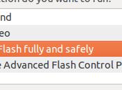 Installer correctement player Flash Ubuntu avec Doctor