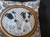 coussin Jack Russell