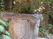 Palazzo Albrizzi, puits, mouton bleu