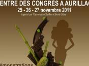 "Salon Chocolat ""Showcolat"" aura lieu novembre Aurillac"