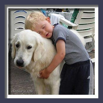 Aujourd 39 hui et demain le no l des animaux paris paperblog - Porte de versailles animaux ...