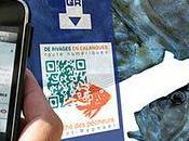 Code WebApp Marché Pêcheurs