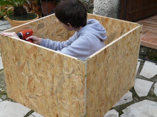 Changement de pot pour les palmiers chamereops d couvrir - Palmier en pot pour terrasse ...