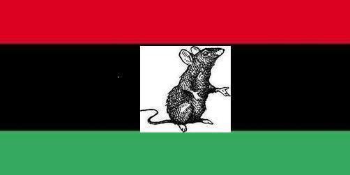 Libye – Nouvel échec du CNT face aux tribus et aux milices