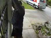 FedEx buzz d'une livraison fragile d'écran plat