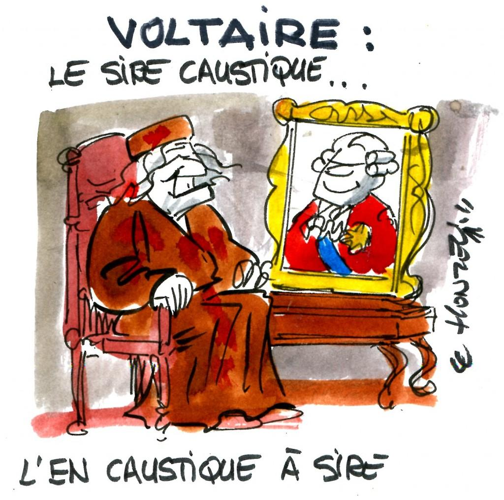 voltaire religion essay Candide and religion  this is the expression voltaire used to articulate his feelings for organized religion with many natural theists soon to follow his path.