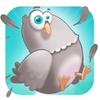 Pigeon, pigeon plus stupide dispo Gratuitement l'App Store
