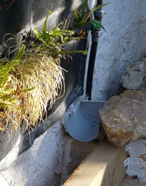1er anniversaire pour notre mur v g tal filtrant for Membrane etanche bassin