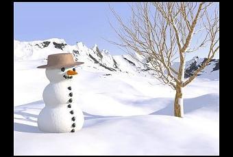 Pas de bonhomme de neige cette ann e lire - Vrai flocon de neige ...