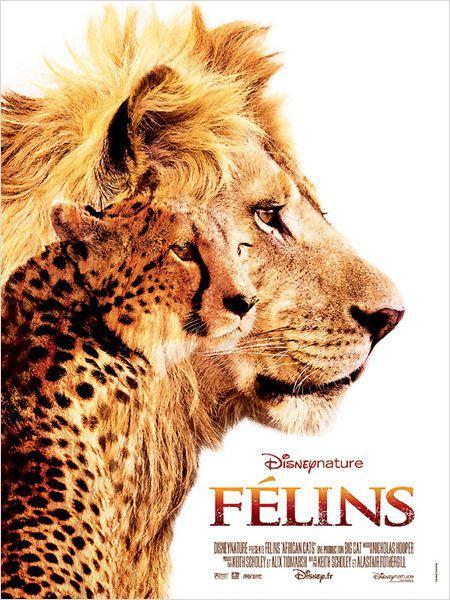 http://media.paperblog.fr/i/524/5243396/critique-cinema-felins-L-187eFV.jpeg