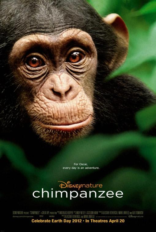 Chimpanzés (2013)
