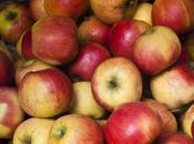 Pommes planchées beurre salé
