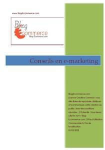 """Livre gratuit """"Mes Conseils e–Marketing"""" par Olivier Levy"""