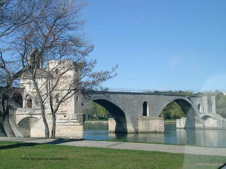 le-pont-davignon.1205441884.jpg