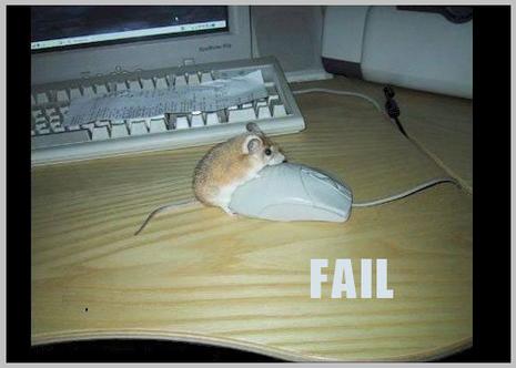 image fail blog image drole