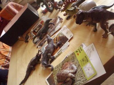attir par les reptiles paperblog. Black Bedroom Furniture Sets. Home Design Ideas