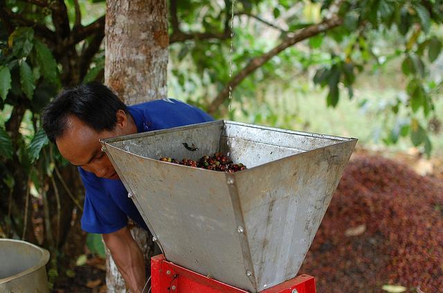 Laos culture values essay