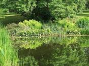 vois jardins partout Didier Decoin