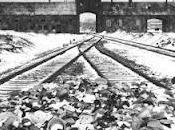 Déplacement Pologne pour devoir mémoire