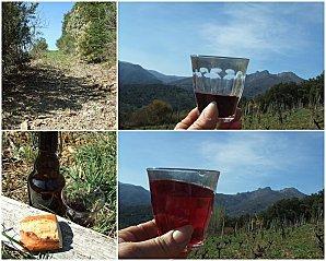 vendredis du vin sur ma colline avec un de loire