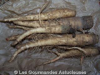 Comment cuisiner des salsifis frais voir - Comment cuisiner des encornets frais ...