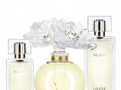 Parfum Chic troublant Nilang