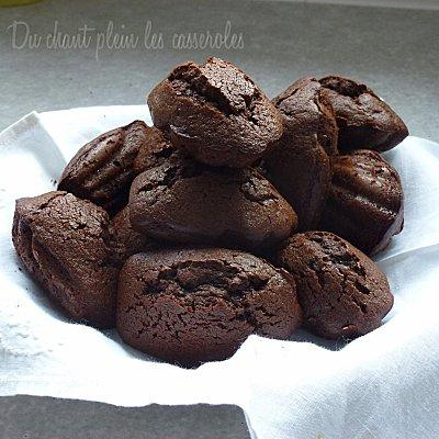Madeleines-chocolat-miel.jpg