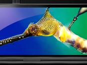 Galaxy Nexus, Google corrige problème réseau