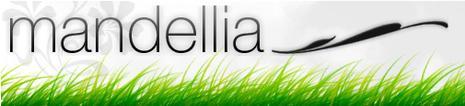 Trouve le blogueur mystère et Mandellia te gâtera !