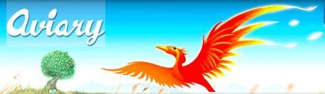Header Phoenix Aviary.com