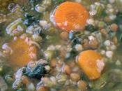 soupe nourrissante lentilles sarrasin légumes (végétarien)